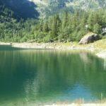 lago_antrona_verde